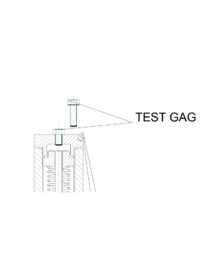 Test gag